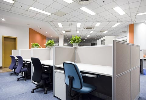 Office/Commercial Cleaning Auckland